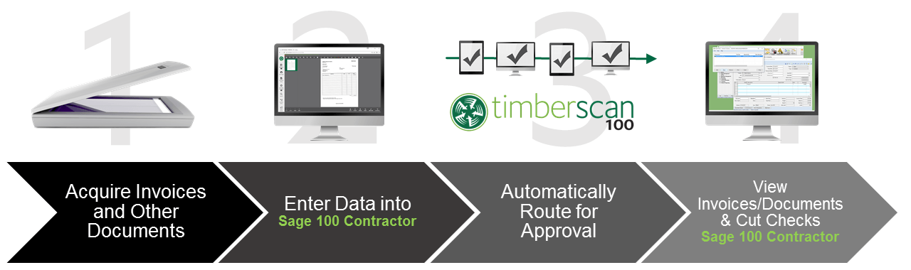 TimberScan Workflow Diagram